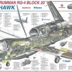 NATO beschafft sich Riesen-Drohnen