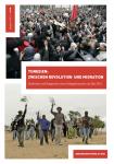 Tunesien: Zwischen Revolution und Migration